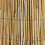Windhager 02451 Canisse Roseau Naturel Beige 1 x 5 m