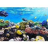 Vlies Fototapete 200x140 cm PREMIUM PLUS Wand Foto Tapete Wand Bild Vliestapete - UNDERWATER REEF - Aquarium Korallen Unterwasser Meer Fische Riff Korallenriff - no. 105