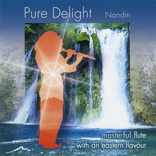pure-delight-by-nandin-baker
