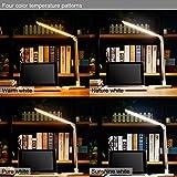 Liqoo LED Schreibtischlampe Dimmbar Tischlampe 10W Tischleuchte Augenschutz drehbar 4...