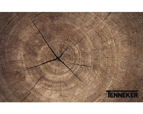 Tenneker Holzkohlegrill Test : ᐅᐅ】 tenneker grill im vergleich apr ⭐ top