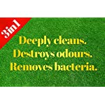 Pro-Kleen Artificial Grass Cleaner - Perfect for Homes with Dogs - Cleans, Disinfects, Deodorises & Fragrances - 4 x 5… 8
