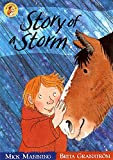 Story Of A Storm