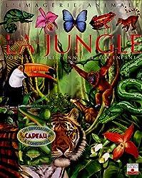 Les animaux de la jungle : Pour les faire connaître aux enfants (1Jeu)