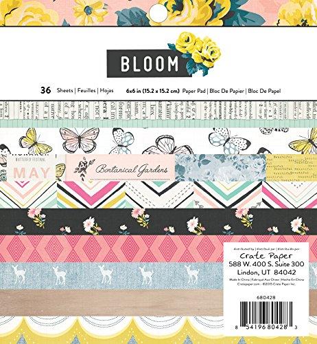 American Crafts Box Papier einseitig Papier Pad 6x 636/pkg-maggie Holmes Bloom, andere, mehrfarbig (Paper Scrapbooking Crate)