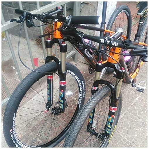 Dfs Air forcella cool-rlc (Dual Air) forcella di sospensione per mountain bike