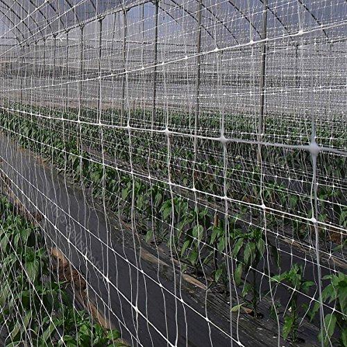 Sti rete per sostegno e supporto per piante piselli ortaggi rampicanti nr15 2x100 mt