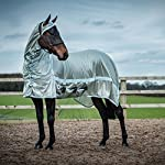 Derby House Pro Fly Rug 10