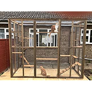 4wire Catio/Cat Lean to 8ft x 6ft x 7.5ft tall with ladders and shelves secure run 61HF 2BHUjgzL
