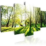 murando - Bilder 200x100 cm - Vlies Leinwandbild - 5 Teilig - Kunstdruck - Modern - Wandbilder XXL - Wanddekoration - Design - Wand Bild - Natur Bäume Wald Park c-B-0030-b-n
