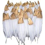 Plumes Colorées, 40pcs Or blanc trempé Plume Décoration, Idéal Pour Costumes, Chapeaux, Décoration d'intérieur Fete Mariage A