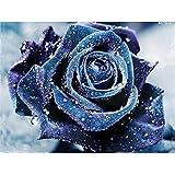 Xshuai Diamant Malerei DIY 5D Voller Diamant Diamant Painting Wird Nicht Verblassen Rose Stickerei Kreuzstich Bilder Kunst Handwerk Dekoration Für Wohnzimmer Schlafzimmer (Blau Rose A)