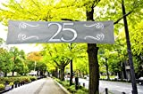 Folat Banner 25 Silberne Hochzeit Party-Deko silber-weiss 180x40cm Ein