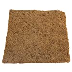 40*60 reptile lizards brown carpet mat pet supplies breathable non-toxic cage soft substrate 40*60 Reptile Lizards Brown Carpet Mat Pet Supplies Breathable Non-Toxic Cage Soft Substrate 61HFfILxHzL