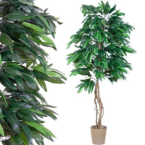 mangobaum-echtholzstamm-kunstbaum-kunstpflanze-180-cm