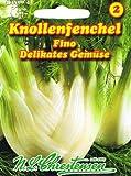 Knollenfenchel/Gemüsefenchel Fino (Portion)