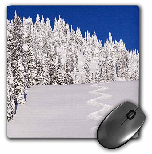 danita-delimont-winter-montana-usa-turn-tracks-off-of-lodi-mousepad-mp-207246-1