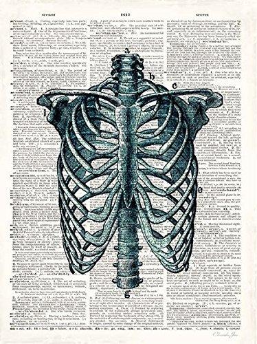 STAMPA SU TELA CON TELAIO - Christopher James: VINTAGE Anatomy studio Quadro su tel ANATOMIA MEDICINA Uomo Medico CULTO Scheletro - 35x45
