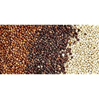 1200 Samen NT Quinoa Weiß Getreide
