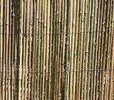Clôture en bambou Protection 5m x 1,5m