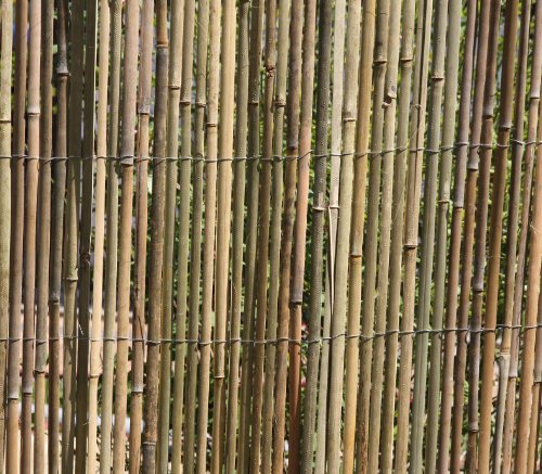 Sichtschutz Bambus thumbnail