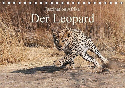 Faszination Afrika: Der Leopard (Tischkalender 2017 DIN A5 quer): Der Leopard, die elegante und kraftvollen (Leopard Elegante)