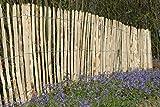 STILTREU Staketenzäune Staketenzaun Kastanie Höhen 50 cm - 200 cm, 5 Meter Rolle, 3 versch. Lattenabstände (Länge x Höhe: 500 x 122 cm, Lattenabstand: 6-8 cm)