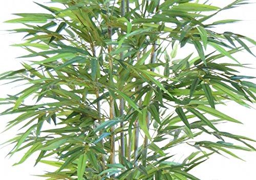 Cañas Bambú Decorativas Baratas Lo Mejor De 2019