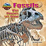 Fossils: What Dinosaurs Left Behind