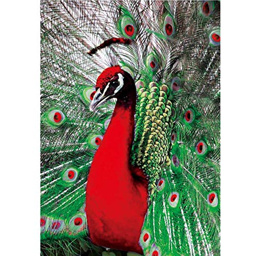 MXJSUA DIY 5D Special Shape Diamond Painting by Number Kit Crystal Rhinestone Round Drill Picture Art Craft Home Wall Decor 12x16In Red Peacock Crystal Kit