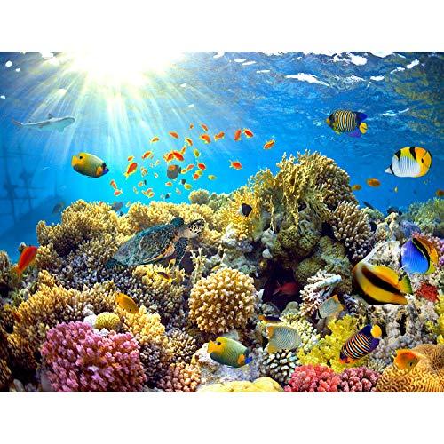 Fototapeten Aquarium 352 x 250 cm Vlies Wand Tapete Wohnzimmer Schlafzimmer Büro Flur Dekoration Wandbilder XXL Moderne Wanddeko - 100{352214738eb9ab7c4cebaecb03270488719d13d2280e8311bd4f33d5aec20031} MADE IN GERMANY - Unterwasserwelt Korallen Riff Runa Tapeten 9073011a