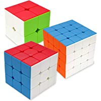 Maomaoyu Speed Cube Set 2x2+3x3x3+4x4x4 3 Pack Puzzle Twist Magic Cube sans Autocollant Cube de Vitesse Magique Cadeau…