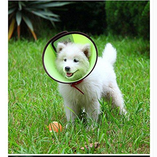 LVRXJP12 Pet Kragen verhindern Greifen Lecken Beißen Kreis Cortex verdickt Selbstklebendes Design Einstellbare Größe, Green