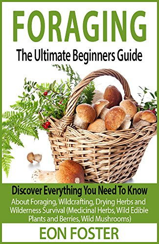 foraging-the-ultimate-beginners-guide-discover-everything-you-need-to-know-about-foraging-wildcrafti