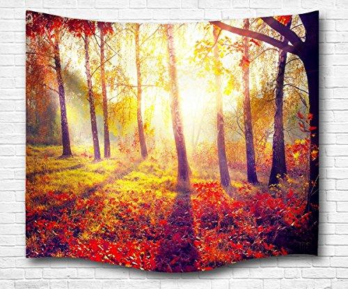 A.Monamour Schöner Morgen Roter Wald Wald Bäume Sonnenschein Landschaft Fotografie Druck Tuch Wand Hängen Dekor Kunst Wandteppich Wandmalerei Für Schlafsäle Wanddekor Wohnaccessoires Deko Wandteppiche