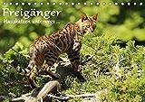 Freigänger - Hauskatzen unterwegs (Tischkalender 2019 DIN A5 quer): Hauskatzen in freier Natur (Monatskalender, 14 Seiten ) (CALVENDO Tiere)