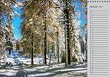 Zwischen Harz und Heide (Wandkalender 2017 DIN A3 quer): Idyllische Ausflugsziele in Braunschweig und Umgebung (Geburtstagskalender, 14 Seiten )