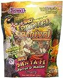 Brown 's-Tropical Karneval Spicy Santa Fe Parrot behandelt-12Oz (340g)