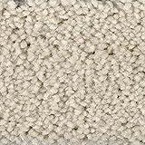 Teppichboden Auslegware Meterware Hochflor Shaggy Langflor Velour weiß beige 400 und 500 cm breit, verschiedene Längen