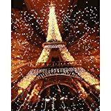shukqueen DIY Ölgemälde, Erwachsene 's Malen nach Zahlen Kits, Acryl Gemälde Feuerwerk Eiffelturm 40,6x 50,8cm, Frameless,Just Canvas