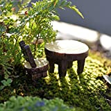 PIXNOR 5 Sets Miniature Fairy Garden Ornaments Set - Table and Chair