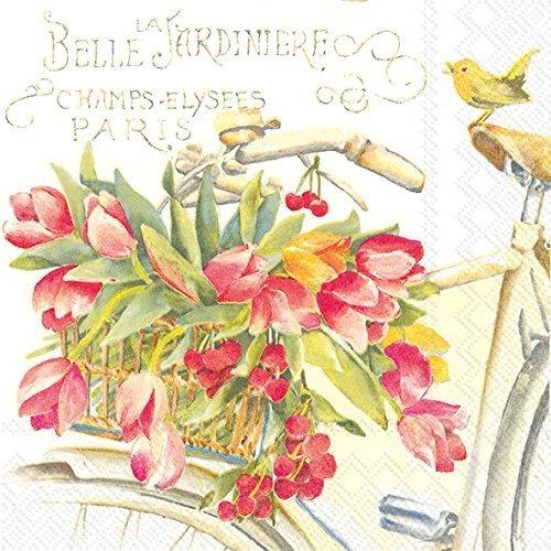loral 3-lagig Servietten, aus Papier, 20-count, Bella LA Jardiniere (Serviette Drucken)