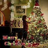 lederTEK Solar Powered Waterproof Fairy String Lights 72ft 22m 200 LED 8 Modes Christmas Decorative Lamp for Outdoor, Garden, Home, Wedding, Xmas Tree New Year Party (White)