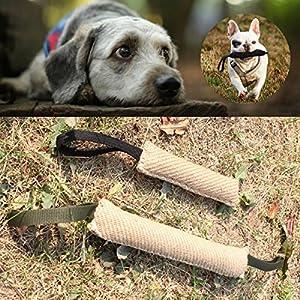 Bluelover Poignées Jute Police Jeune Chien Bite Remorqueur Lecture Jouet Pet Training Chewing Dog Bite Protection Bras Manches