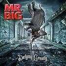 Defying Gravity [VINYL]