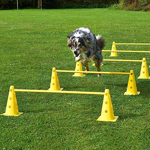 Kegel-Hürden 5er Set, gelb/gelb, mit Tragetasche, für Agility - Hundetraining