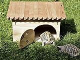 Blitzen Tortuga Deluxe Schildkröten-HausZufluchtsort für Landschildkröten mit Boden, professionell, Einblick möglich,  thermoreguliert, schallisolierend, hochwertiges Holz, feuchtigkeitsbeständig, behandelt mit ungiftigem, transparentem Lack, gebrauchsfertig, zu 100% in Italien hergestellt, personalisierbar