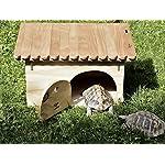 blitzen deluxe ground turtle house with floor Blitzen Deluxe Ground Turtle House with Floor 61HaAJ 9t8L
