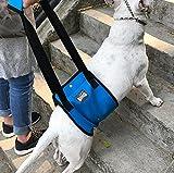 Ylen Hundelift Harness Tragehilfe Hebehilfe Rehabilitation Geschirr mit Griff für Hunde Verletzungen und Arthritis