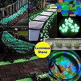 Bargain World 10pcs tanque de peces de acuario luminoso piedra brillante guijarro aritificial decoración del jardín acuario piedra